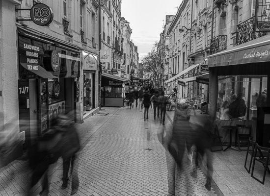 2017a, Best Of, Expo, Projet 52, Reportage, Rue, Scène de Rue, Pour 1 Clic, Photographe, Photographie, Le Lion d'Angers