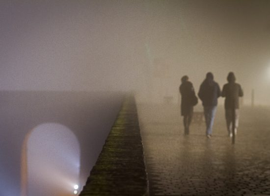 Brouillard, hivers, Pour 1 Clic, Photographe, Photographie, Le Lion d'Angers