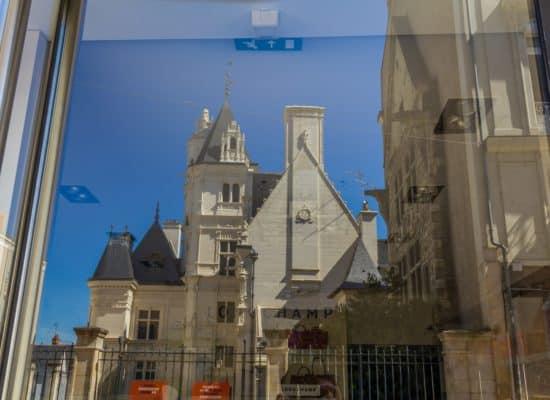 Expo 2015, Vitrine, Pour 1 Clic, Photographe, Photographie, Le Lion d'Angers
